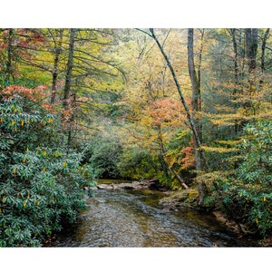 Water Picture Note Card Pisgah Forest River Rocks Art Note Card Handmade with Envelope Nature Photo Card River Stones Photography
