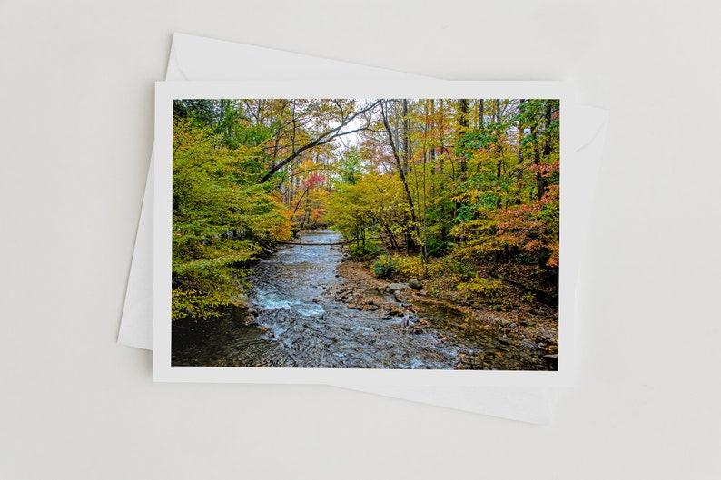 Elegant Handmade Nature Photo Greeting Cards Autumn Leaves image 0