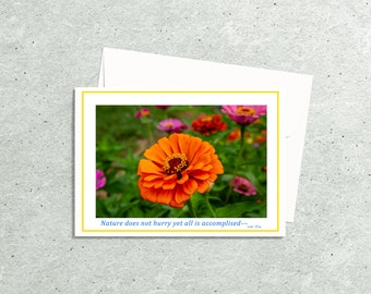 Flower Note Card, Photo Card with Premium Envelope, Zinnia Flower Photography, Botanical Art, Floral Photo Greeting or Note Card Art