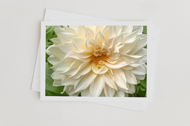 Handmade Photo Note Cards with Envelopes Dahlia Flower Art image 0