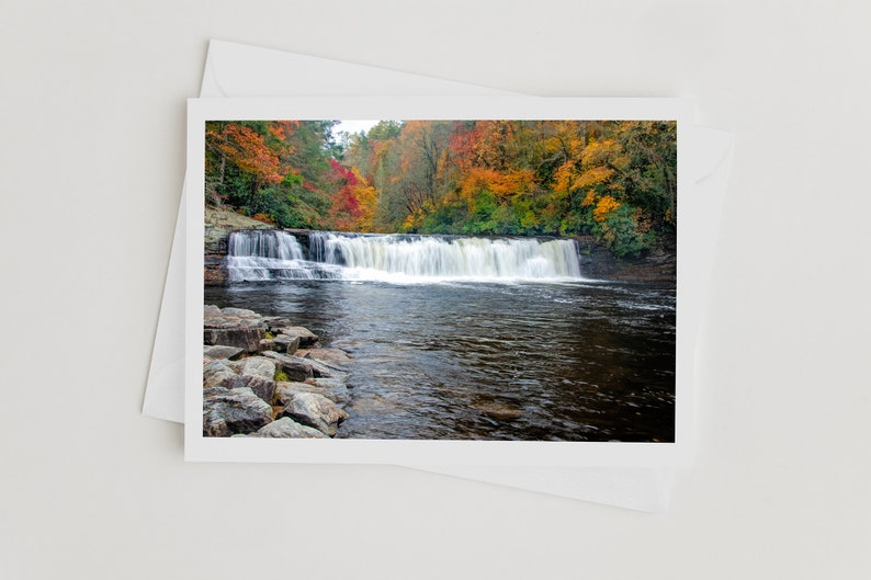 Handmade Photo Art Greeting Cards Nature Note Cards Hooker image 0