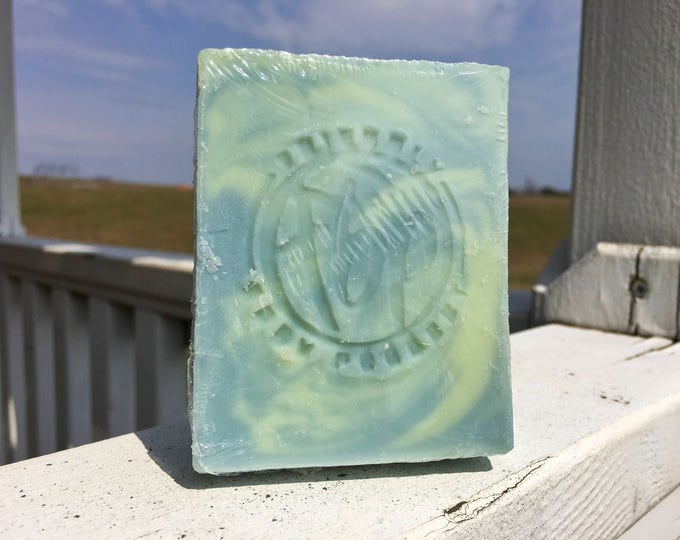 Shampoo Bar - Peppermint Tea Tree Shampoo