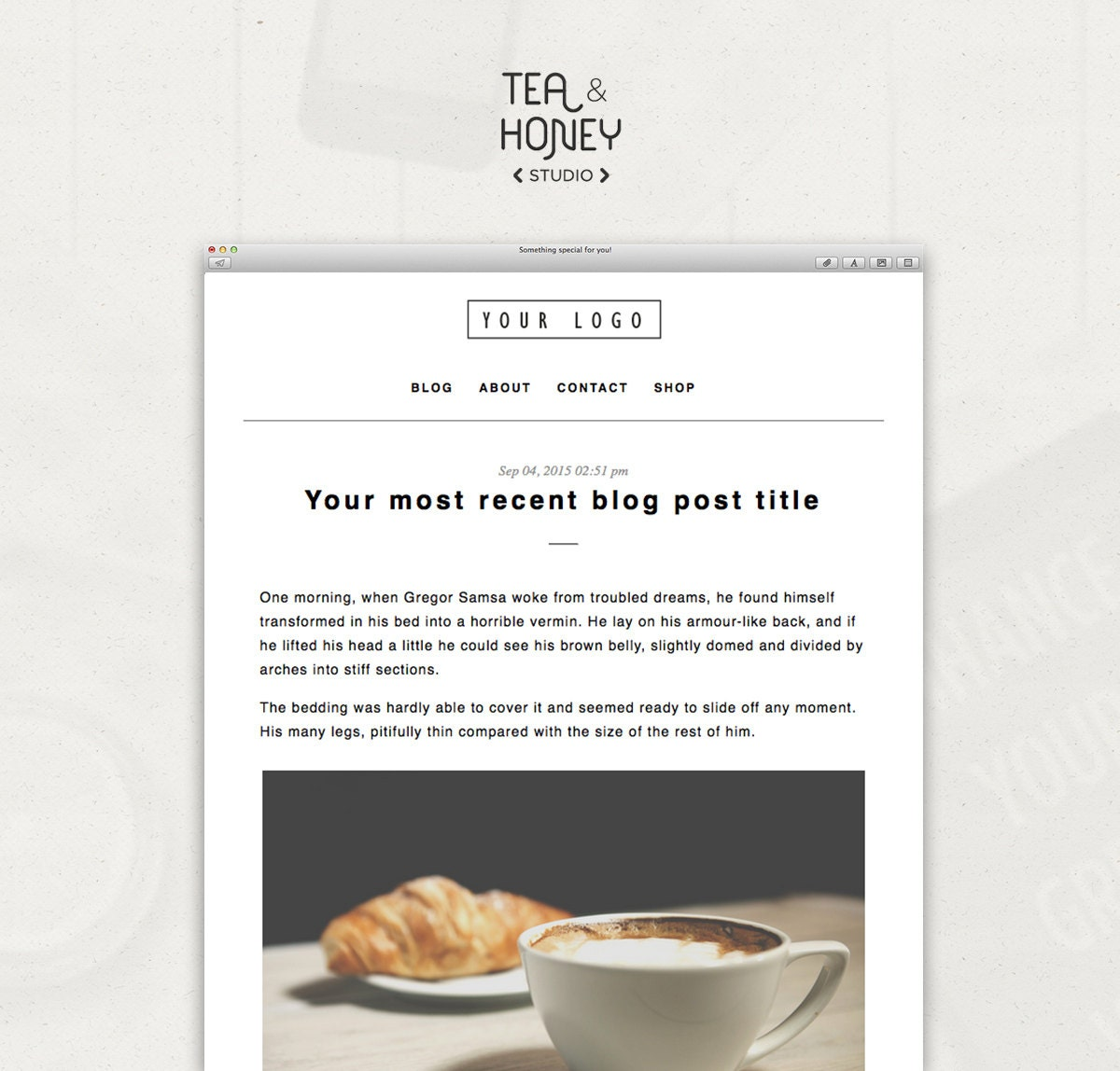 RSS Mailchimp Email Newsletter Template, Send your latest blog posts to  contact list, HTML Email Campaign, Customizable template, All setup