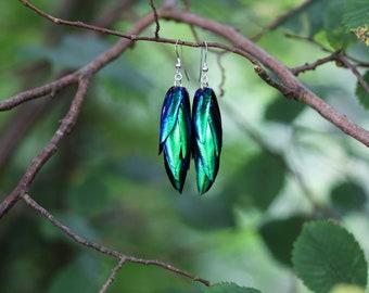 Beetle Wing Earrings with Sterling Silver Wires, Gothic Earrings, Lightweight Dangle Earrings.