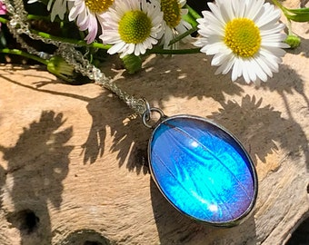 Real Blue Butterfly Wing Pendant Necklace on a Sterling Silver Chain, Butterfly Jewellery, Reversible Necklace