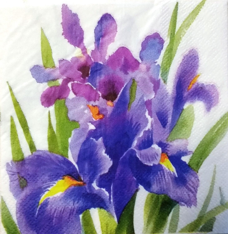 Two 2 iris flowers purple flowers paper cocktail napkins etsy zoom izmirmasajfo