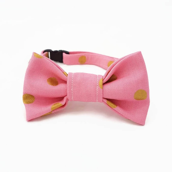 hnliche artikel wie katzenhalsband mit fliege goldene punkte lachs rosa. Black Bedroom Furniture Sets. Home Design Ideas