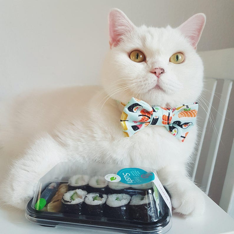 Cat Collar with Bow Tie  Sushi  Safety image 0