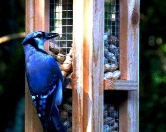Beautiful cedar wood whole peanut bird feeders - Unique bird feeders for blue jays and woodpeckers