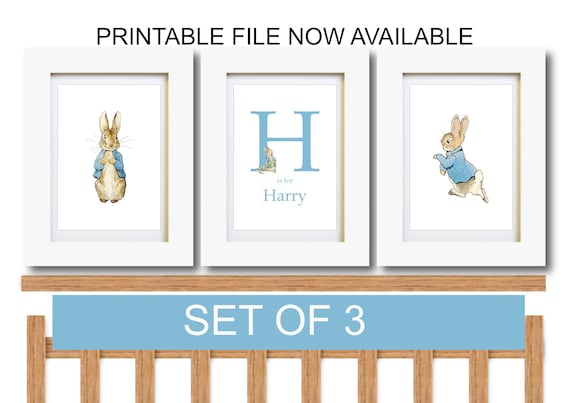 Peter Rabbit Nursery Wall Art Christening New Baby Present Poster A4 Print Only