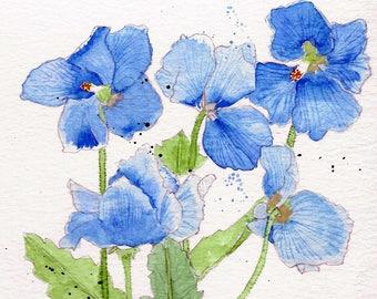 Himalayan, Watercolor Notecards, Poppies No. 1729  Himalayan Poppies