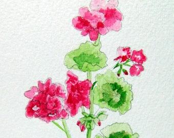 Geranium, Geranium notecards, Geranium stationery, Watercolor notecards, - No. 545 Geranium