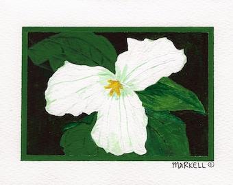 Trillium, White Trillium, Wildflower, Watercolor and Acrylic Notecards - No. 136 Trillium