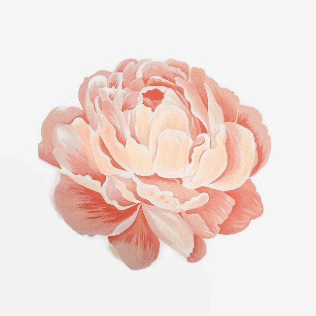peony print flower print peony artwork peony painting pink etsy