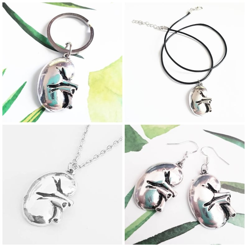 e9994491d8f0 Kidney Anatomy Jewelry Earrings Necklace Collar Pins Keychain