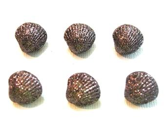 Sea Shell Buttons Clam Glitter Seashells Dress It Up Buttons Jesse James Buttons Set of 6 Shank Flat Back Choice Craft Scrapbook Supply- 124