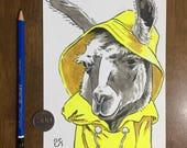 Llama in a Raincoat - Ori...