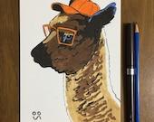 Alpaca in a Ball cap - Or...
