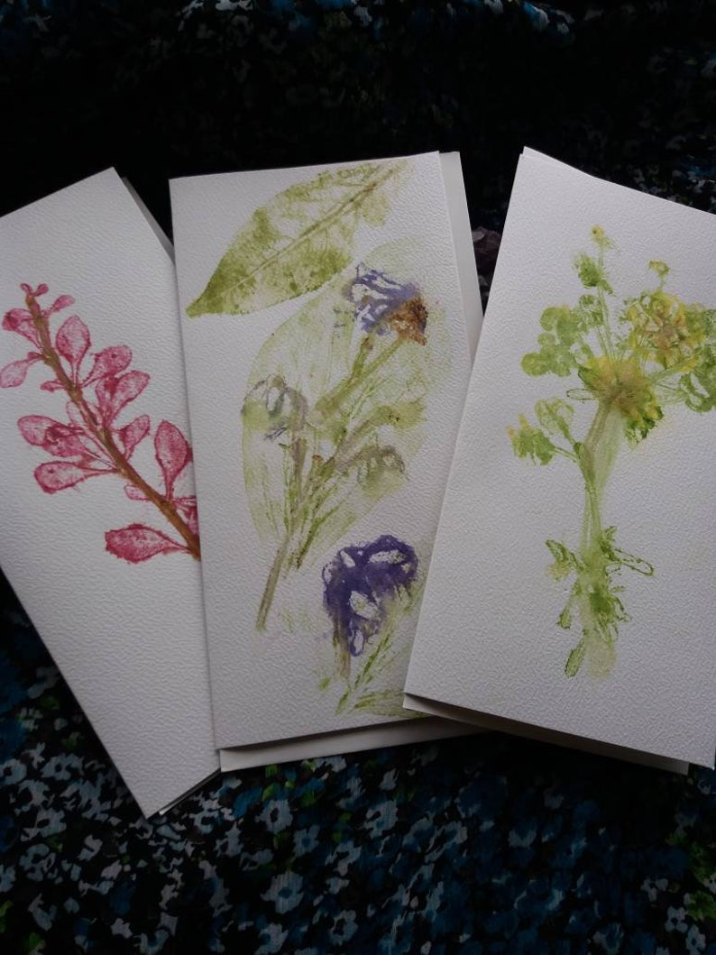 Art Cards Pack • Natural Plant Pigments • Hapa Zome (Pack B)