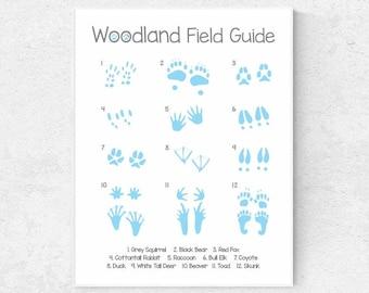 Woodland animal tracks printable poster woodland decor woodland nursery art wilderness guide field guide forest animals animal footprints