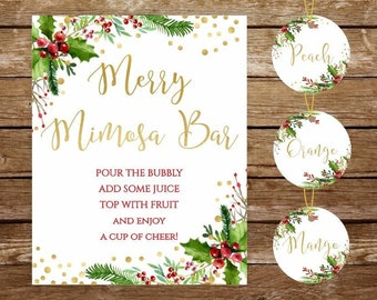 mimosa bar sign juice labels christmas mimosa bar sign printable merry mimosa bar sign holiday mimosa bar bridal shower bar mimosa sign 135