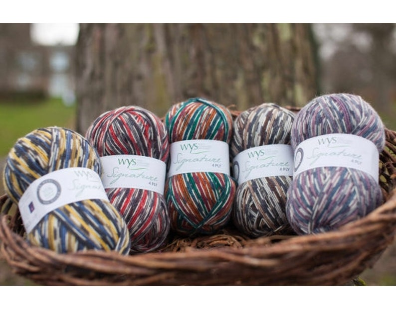 WYS Signature Country Birds 4 Ply Yarn image 0