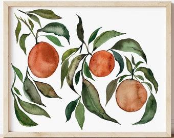 Orange Watercolor Botanical Art Print