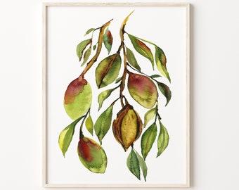 Almond Tree Art Watercolor Print