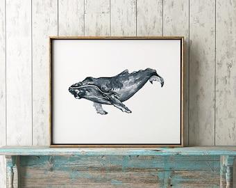 Humpback Whale 105 Print Humpback Whale Art Humpback Whale Art Whale Watercolor Whale Wall Art Whale Decor Whale Illustration Home Decor Art