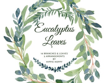 eucalyptus watercolor clipart eucalyptus clipart eucalyptus leaves wedding clipart watercolor clipart clip art leaves clipart watercolor art