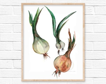 Onions Watercolor Print
