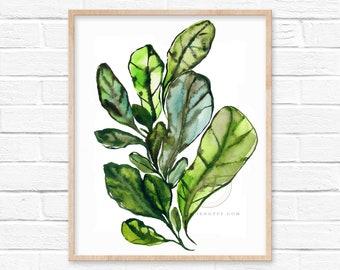 Fiddle Leaf Fig Watercolor art Print by HippieHoppy
