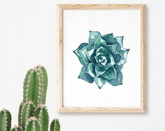 Large Succulent No. 101 Watercolor Print, Watercolor Succulent, Watercolor Cactus, Cacti, Cactus Art, Wall Art Succulents, Cacti Succulent