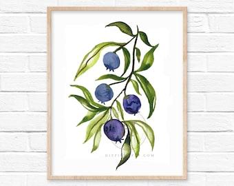 Blueberry Watercolor Print Fruit Art