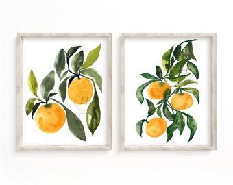 Orange Fruit Watercolor Prints