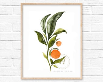 Orange Art Print by HippieHoppy