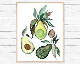 Avocado Watercolor Print