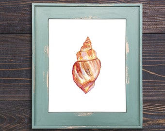 Shell No. 1212 Print, Shell Decor, Shell Art, Beach Art, Beach Wall Art, Nautical Painting, Shell Watercolor, Shell Wall Art, Watercolor She