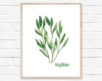 Bay Leaves Watercolor Print No.101, Fresh Herbs Picture, Botanical Painting, Food Watercolor, Watercolor Kitchen Art, Green Leaf, Bay Herbs