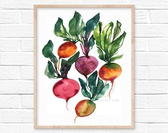 Radish Watercolor Print Vegetable Art