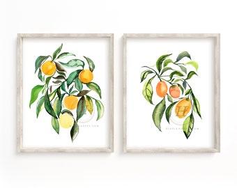 Citrus Art Prints set of 2 by Hippiehoppy