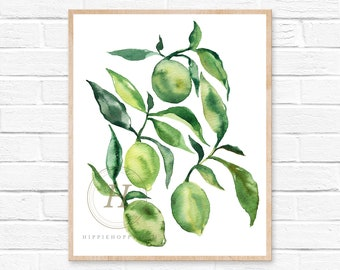Lime Watercolor Citrus Fruit Simple Kitchen Decor Painting Wall Art Print