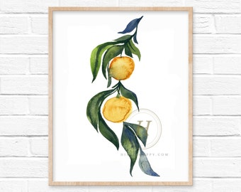 Orange Tree Watercolor Print Kitchen Wall Art