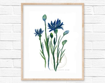 Cornflower Watercolor Print Wall Art