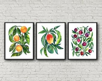 Orange Mango Cherry prints, Set of 3, Watercolor wall art