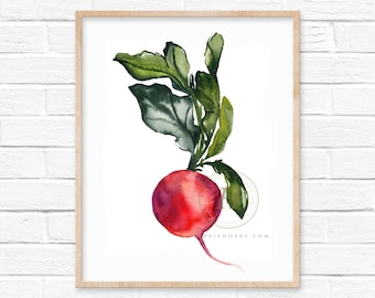 Radish Watercolor Print Vegetable Art by HippieHoppy