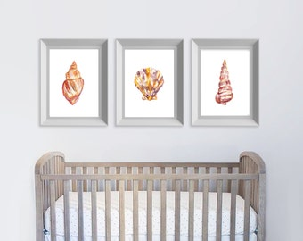 Shell Set Of Three, Shells, Shell Art, Watercolor Shells, Shell Wall Art, Shell Decor, Beach House, Nursery Art, Ocean Art, Watercolor Print