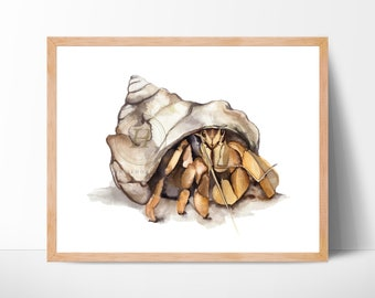 Hermit crab art print - Watercolor painting - Wall decor
