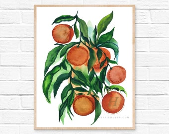 Oranges, Watercolor Print, Modern Art by HippieHoppy