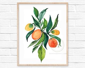 Oranges and Kumquats Watercolor Print